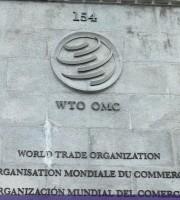 Ngozi Okonjo-Iweala à l'OMC : les défis de la nouvelle directrice